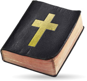 Renewed Vision Store - Bibles for ProPresenter